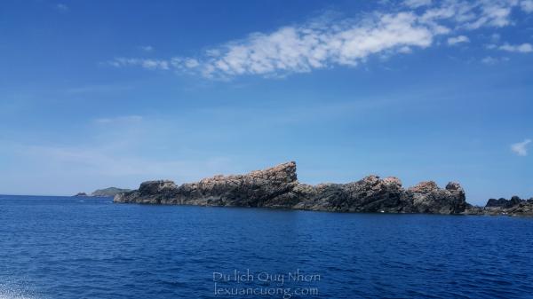 Lặn ngắm san hô tại Hòn Sẹo, Nhơn Lý - Quy Nhơn